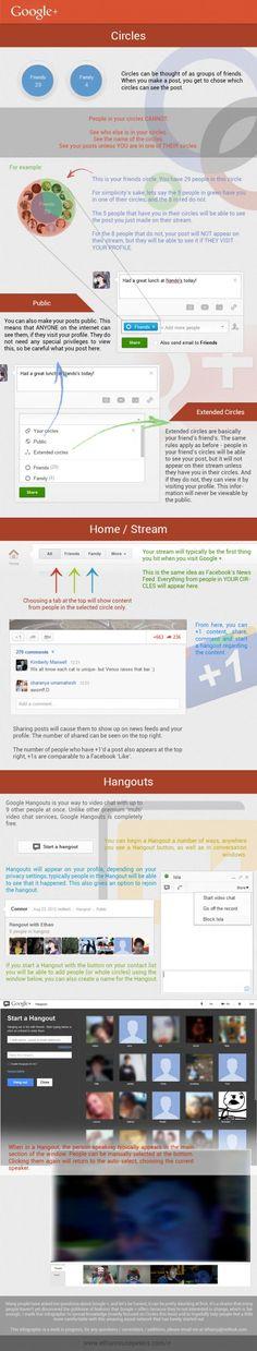 Uso de los círculos en Google + #infografia #infographic#socialmedia