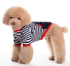 Cool dog clothes stripe pet clothes spring summer by kelifastner, $16.99