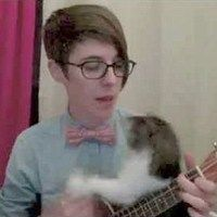 Nerdy Love Song with Added Kitten Bonus!