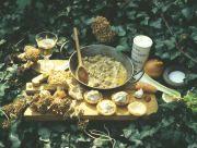 Morels a la Creme Recipe Mushroom Recipe from Roger Phillips at Rogersmushrooms.com