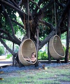 Wicker swing chairs hanging from a tree