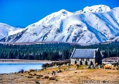 Lake Tekapo, New Zea