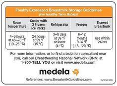 Medela Magnet of Breastmilk Storage Rules:Amazon:Baby