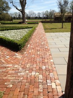 Reclaimed brick path. Will do ours in herringbone pattern but like the look of the whiter bricks scattered through.