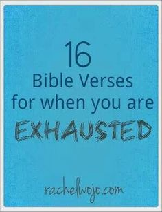 16 Bible verses
