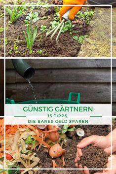 Die 160 besten Ideen zu Tipps zum Anpflanzen im Garten in