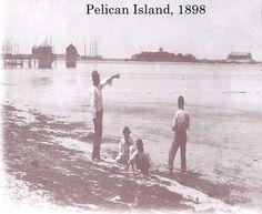 Pelican Island 1898