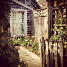 Freedoms of Nantucket
