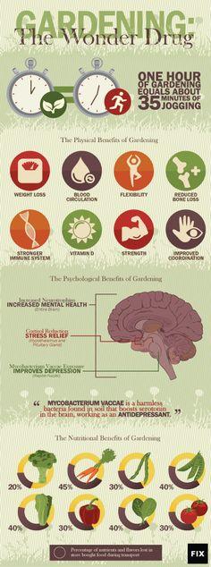 Gardening: the Wonderdrug | The Health Benefits of Gardening | Fix.com