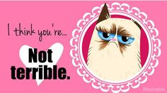 Everyone's favorite cranky kitty has the perfect way to say 'I love you' without getting sentimental about it.