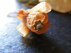 peachy by bedouin on Etsy