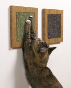 Amazon.com: Itch - Modern Wall Scratcher in Eco-Friendly Amber Vertical Bamboo and Brown Mohair (Faux): Pet Supplies