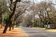 Pretoria Winter – My Great Pins Port Elizabeth, Table Mountain, Kruger National Park, Pretoria, African Animals, My Land, Africa Travel, Best Cities, South Africa