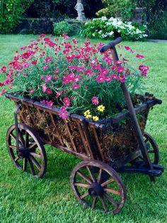 Garden planter goat cart