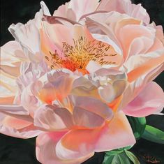Peony's Glow $5675 150x150cm oil on Linen canvas This is a large stunning Painting# of Floral art# for Home Decoration# or workplace decor#