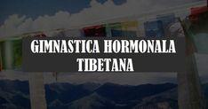 Gimnastica hormonală a fost practicată de călugării unei mânăstiri tibetane. Ea durează doar 5 minute pe zi și e foarte simplu de făcut. Acest tip de gimnastică are rolul de a menține toate glandele endocrine tinere, la vârsta de 25-30 de ani. Sunt niște exerciții care se fac dimineața în pat, de dorit înainte de … Workout, How To Plan, Work Out, Exercises
