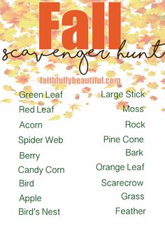 toddler friendly fall scavenger hunt, outside activities for toddlers, playing outside with kids, autumn activities, fall games,