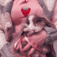 Love Phrases, Aesthetic Vintage, Retro, Highlights, Core, Bunny, Cool Stuff, Animals, Retro Vintage