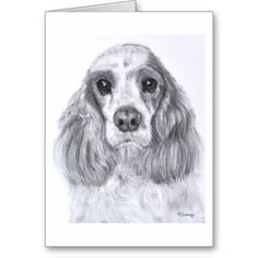 Cocker Spaniel drawing Art Greeting Cards #cockerspaniel #cocker #spaniel #americancockerspaniel #redandwhite