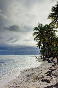Plage de Bois Jolan - Guadeloupe (von Selden Vestrit)