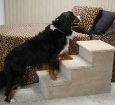 Help your pet reach higher areas with this Triple Pet Step. Choose carefully the size of the steps. Dog Steps For Bed, Dog Ramp For Bed, Pet Steps, Dog Bed, Large Dog Breeds, Large Dogs, Small Dogs, Really Big Dogs, Dog Stairs