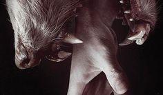 সাভারের আশুলিয়ার জামগড়া এলাকায় এক গৃহবধূকে ধর্ষণের চেষ্টার ঘটনায় থানায় লিখিত অভিযোগ দায়ের করা হয়েছে। আজ সোমবার (২৫ জানুয়ারি) দুপুরে ওই গৃহবধূর স্বামী বাদী হয়ে অভিযোগটি দায়ের করেন[....]