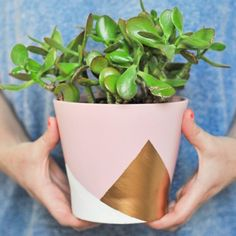 Use a little liquid gold leaf to dress up a plain pink planter! This colorblocked geometric vase incorporates all the trends! Painted Plant Pots, Painted Flower Pots, Pots D'argile, Pot Plante, Diy Planters, Terracotta Pots, Diy Painting, Easy Diy, Fun Diy