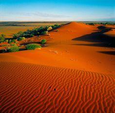 The Simpson Desert, Northern Teritory, Australia, Photo by Steve Parish
