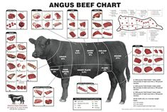 Buy Beef Cuts Of Meat Butcher Chart cattle diagram Mini Poster poster Measures Excellent quality poster. Beef Cuts Of Meat Butcher Chart cattle diagram Mini Poster posters for sale. Check out our site for latest sales. Beef Cuts Diagram, Beef Cuts Chart, Cuts Of Beef, Meat Butcher, Butcher Shop, T Bone Steak, Beef Steak, Wagyu Beef, Hanger Steak