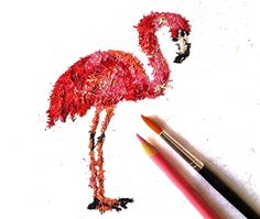 Artist Transforms Pencil Shavings Into Colorful Illustrations  Pencil shavings animals: Flamingo