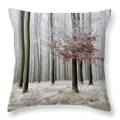 Last leaves. Image of misty winter forest printed on pillow. Camera Art, Snowy Trees, Misty Forest, Nature Artists, Nature Artwork, Pin Pin, Pillow Sale, Botanical Art, Basic Colors
