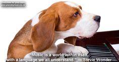Dog playing the piano. Dog playing the piano,white background , Dog Training Books, Dog Training Classes, Dog Training Techniques, Crate Training, Dog Training Tips, Puppy Trainer, Dog Clicker Training, Leash Training, Dog Training Equipment