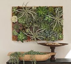 Crafty Inspiration Ideas Succulent Wall Hanging Plus Pottery Barn Kit Frame Terrarium For Succulents Artificial Diy artificial succulent wall hanging. terrarium for succulents. Artificial Succulents, Faux Succulents, Faux Plants, Plant Wall, Plant Decor, Wall Hanging Arrangements, Framed Wall Art, Wall Art Decor, Wall Tv