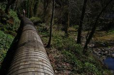 Stave Pipeline At Lake Oswego, Oregon, U.