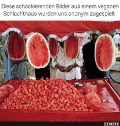 Diese schockierenden Bilder aus einem veganen.. | Lustige Bilder, Sprüche, Witze, echt lustig