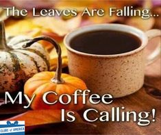 Autumn Morning Coffee Quotes Citations De Café Matin D'automne Mañana De Otoño Citas De Café Citazioni Di Autunno Mattina Caffè Sonbahar Sabahı Kahve Tırnak - Fashion Design Break Coffee, Coffee Talk, Coffee Is Life, I Love Coffee, My Coffee, Coffee Drinks, Coffee Shop, Coffee Cups, Coffee Lovers
