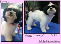 Miss Minnie is all grown up! Doesn't she look beautiful!