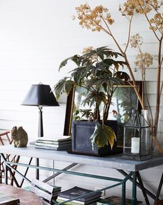 inspiring home decor photographed by nicole franzen. / sfgirlbybay
