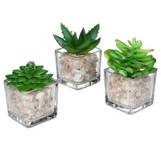 Small Glass Cube Artificial Plant Modern Home Decor / Faux Succulent Planter Pots, Set of 3 - MyGift >>> Want to know more, click on the image. (This is an affiliate link) #ArtificialPlants