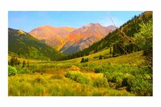 """Red Mountain Pass, Colorado  """"Late Summer Meadow""""  East Coast L.A. Photography  (Lisa Bourque)"""