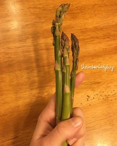 "177 Likes, 9 Comments - Kati Jane (@theurbanladybug) on Instagram: ""Behold, the first 3 Homegrown Asspergass!  #Asparagus"""