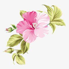 hawaii hand-painted flowers, Hawaii, Tropic, Hand PNG and Vector Vector Flowers, Botanical Flowers, Botanical Prints, Hawaii Flowers, Hand Flowers, Fabric Painting, Printable Wall Art, Watercolor Flowers, Hibiscus