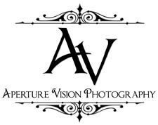 Award Winning Wedding Photographers. Modern. Dramatic. Artfully inspired. Wedding Photographers Greenville SC.