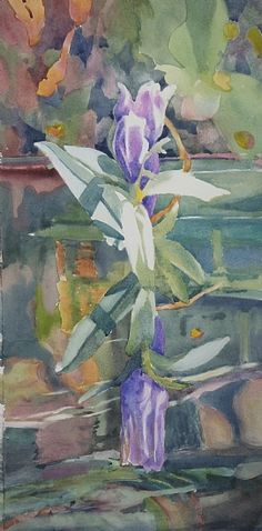 Bottle Gentian by Sarah Yeoman Watercolor ~ 30 x 14