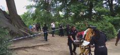 VIDEO: Reportan explosión en Central Park en Nueva York...