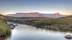 The Cavern offer Drakensberg accommodation with views of the surrounding valleys. The Forest Spa is a relaxing space to unwind in whilst being treated. Holiday Competitions, Family Resorts, Africa Travel, Resort Spa, Beach Trip, South Africa, Travel Destinations, Mountains, Water