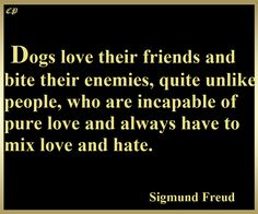 """""""Dogs love their friends and bite their enemies, quite unlike people, who are incapable of pure love and always have to mix love and hate.""""—Sigmund Freud http://prosperityclub1.com/"""