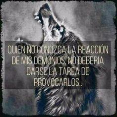 Wolf Quotes, Dark Quotes, Tumblr Quotes, Life Quotes, Business Motivation, Life Motivation, Wolf Life, Spirit Quotes, Wild Wolf