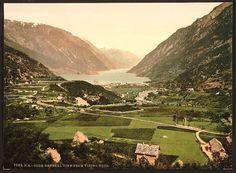 From Vikinghaug, Odde, Hardanger Fjord, Norway