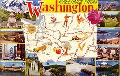 Washington State Map Vintage Chrome Greetings Postcard